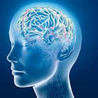 Bạn có khả năng chinh phục được 10 câu hỏi IQ hại não này?
