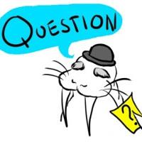 Bài tập ngữ pháp: Câu hỏi đuôi Tag Question - Đề số 2