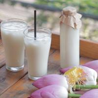 Cách làm sữa hạt sen bổ dưỡng cho cả nhà