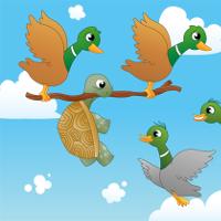 Bé học Tiếng Anh qua truyện: The tortoise and the ducks