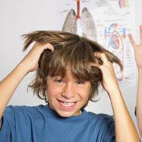 Phương pháp đơn giản đặc trị chấy rận cho trẻ ngay tại nhà