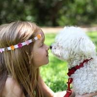 Bài tập ngữ âm căn bản: Chủ đề động vật