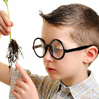 Dấu hiệu chứng tỏ con bạn có chỉ số thông minh cao