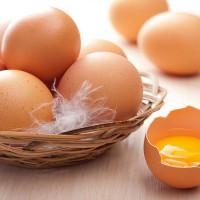 Tuyệt đối không cho trẻ ăn trứng trong những trường hợp này