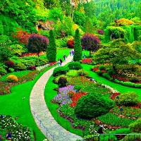 Bài tập luyện đọc Tiếng Anh trình độ cơ bản: My Garden