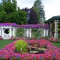 Văn mẫu lớp 5: Tả cảnh khu vườn vào mùa xuân