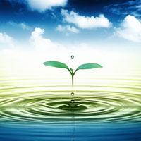 Giải bài tập trang 18 SGK Sinh học lớp 10: Các nguyên tố hóa học và nước