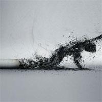 Văn mẫu lớp 8: Thuyết minh về tác hại của thuốc lá