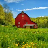 Tiếng Anh lớp 8 Chương trình mới Unit 2: Life in the Countryside