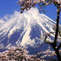 Câu hỏi trắc nghiệm và bài tập Địa lý 11 - Bài 9: Nhật Bản (Tiết 1)