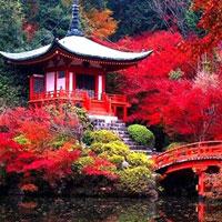 Câu hỏi trắc nghiệm và bài tập Địa lý 11 - Bài 10: Cộng hòa Nhân dân Trung Hoa (Tiết 1)