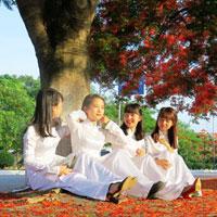 Đề thi học kì 1 môn Toán lớp 11 trường THPT Nguyễn Du, TP Hồ Chí Minh năm học 2016 - 2017