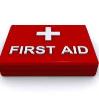 Bài tập tiếng Anh lớp 8 Unit 9: A First Aid Course có đáp án - Số 2