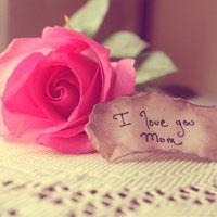 Những lời chúc hay tặng mẹ, tặng vợ ngày 8-3
