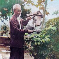 Giáo án chủ đề Quê hương, đất nước, Bác Hồ