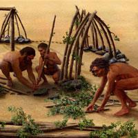 Lịch sử 10 bài 1: Sự xuất hiện loài người và bầy người nguyên thuỷ