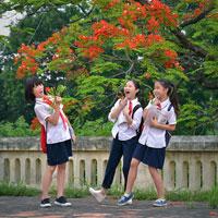 Đề thi học sinh giỏi môn Hóa học lớp 9 Phòng GD&ĐT Thành phố Bắc Giang năm học 2016 - 2017