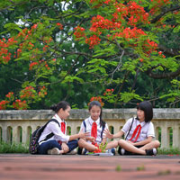 Đề thi học sinh giỏi môn Ngữ văn lớp 6 Phòng GD&ĐT Thành phố Bắc Giang năm học 2016 - 2017