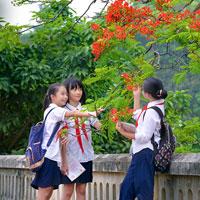 Đề thi vào lớp 10 môn Toán tỉnh Hải Dương năm học 2017 - 2018