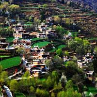 Bài tập trắc nghiệm Lịch sử 9: Trung Quốc (Phần 2)