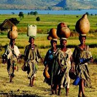 Bài tập trắc nghiệm Lịch sử 9: Các nước châu Phi