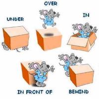 Các loại giới từ trong tiếng Anh và cách sử dụng