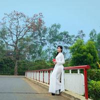 Câu hỏi trắc nghiệm môn Cơ sở văn hóa Việt Nam: Văn hóa và văn hóa học