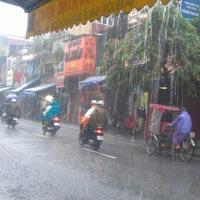 Văn mẫu lớp 5: Tả cảnh đường phố khi trời mưa