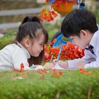 Giáo án Tiếng Việt 3 tuần 2: Tập đọc - Ai có lỗi?
