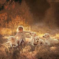 Giáo án lớp lá (5 - 6 tuổi): Bé yêu con vật nuôi trong gia đình