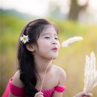 Giáo án lớp lá (5 - 6 tuổi): Hoa xung quanh bé