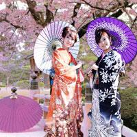 Giải bài tập SGK Địa lý lớp 11 Bài 9: Nhật Bản (Tiết 2)