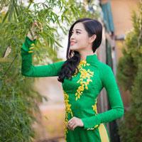 Giáo án Lịch sử 7 bài 9: Nước Đại Cồ Việt thời Đinh - Tiền Lê (Tiết 2)