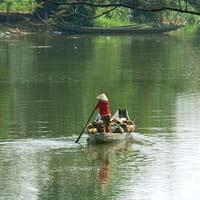 Tả cảnh buổi chiều trên dòng sông quê em