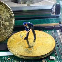 Đào bitcoin là gì? Cày bitcoin là gì?