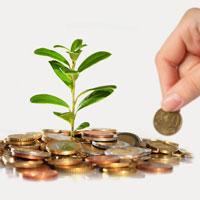 Giải bài tập SGK Công nghệ lớp 10 bài 56: Thực hành: Xây dựng kế hoạch kinh doanh