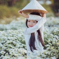 Giáo án Công nghệ 6 bài 27: Thực hành: Bài tập tình huống về thu, chi trong gia đình (Tiết 2)