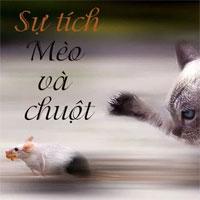 Truyện cổ tích cho bé: Sự tích Mèo và Chuột