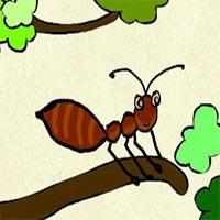 Truyện cổ tích cho bé: Sự tích con kiến Dương
