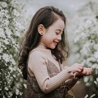 Giáo án Tin học 6: Ôn tập học kì II