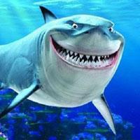 Truyện cổ tích cho bé: Sự tích con cá mập
