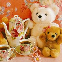 Truyện cổ tích cho bé: Sự tích gấu Teddy