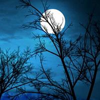 Soạn Văn 9: Ánh trăng