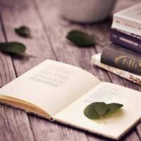 Tập đọc lớp 5: Phân xử tài tình