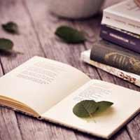 Lập dàn ý miêu tả Quyển sách Tiếng Việt 5, tập hai