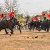 Chính tả lớp 2: Nghe - viết: Ngày hội đua voi ở Tây Nguyên