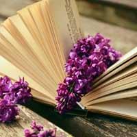 Tập đọc lớp 5: Luật tục xưa của người Ê-đê