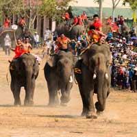 Chính tả lớp 3: Nghe - viết: Hội đua voi ở Tây Nguyên