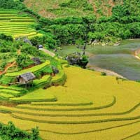 Giải bài tập SGK Địa lí 5 bài 18: Châu Á (tiếp theo)
