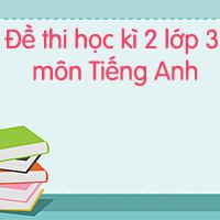 Đề thi học kì 2 lớp 3 môn Tiếng Anh số 2